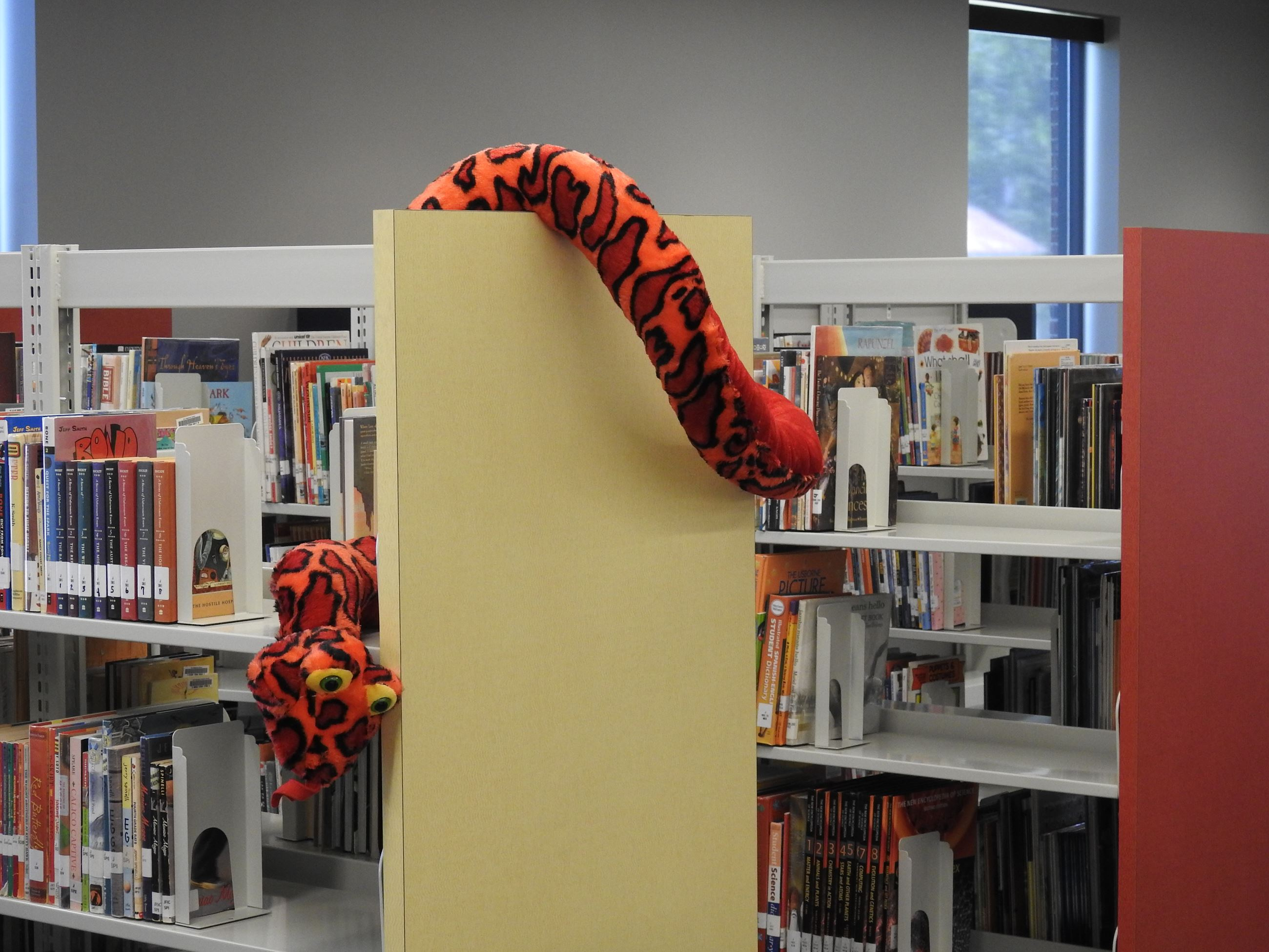 Bookshelf with stuffed animal hanging from the end